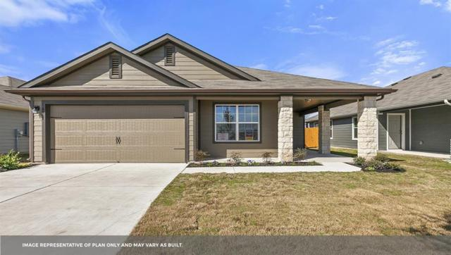 314 Cassandra Dr, Hutto, TX 78634 (#3861850) :: Zina & Co. Real Estate