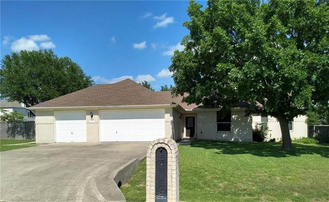 21101 Apache Plum Ln, Pflugerville, TX 78660 (#3865815) :: The Perry Henderson Group at Berkshire Hathaway Texas Realty