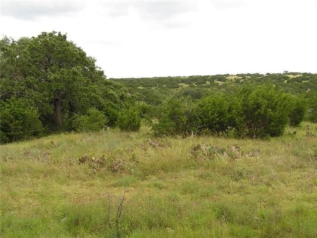 124 Darkwood Ct, Bertram, TX 78605 (#3872668) :: Papasan Real Estate Team @ Keller Williams Realty