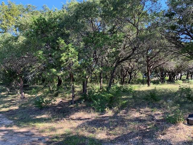 22003 Briarcliff Dr, Spicewood, TX 78669 (#3876374) :: RE/MAX IDEAL REALTY