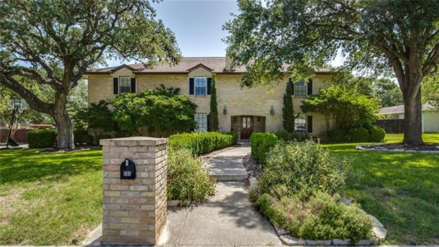 205 Vista Robles St, Other, TX 78232 (#3877292) :: The Heyl Group at Keller Williams