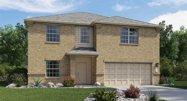 21621 Urraca Ln, Pflugerville, TX 78660 (#3880194) :: The Heyl Group at Keller Williams