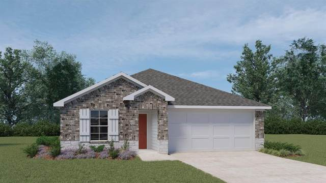 124 Moonrise Dr, San Marcos, TX 78666 (#3883826) :: The Summers Group