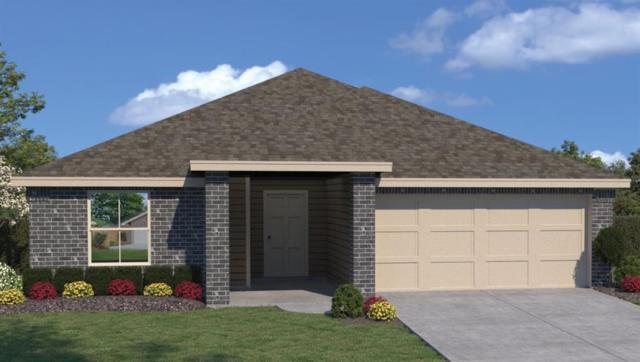 113 Shiner Ln, Georgetown, TX 78626 (#3898877) :: Watters International