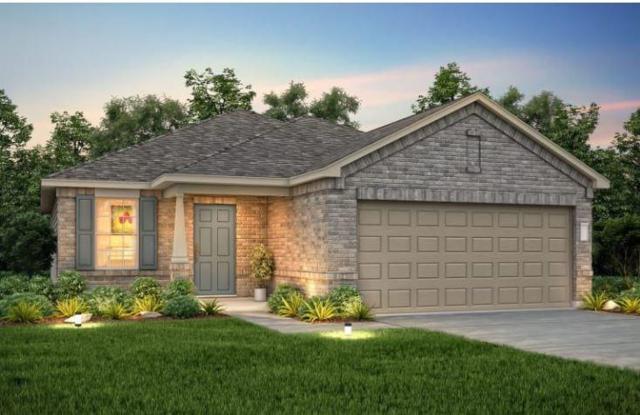 11601 Jackson Falls Way, Manor, TX 78653 (#3908637) :: Ana Luxury Homes