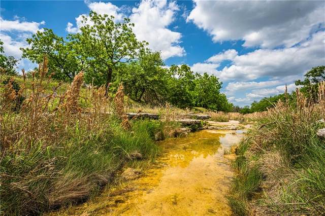 4313 Squaw Creek Rd, Fredericksburg, TX 78624 (#3916863) :: Papasan Real Estate Team @ Keller Williams Realty
