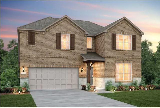 17301 Casanova Ave, Pflugerville, TX 78660 (#3917483) :: KW United Group