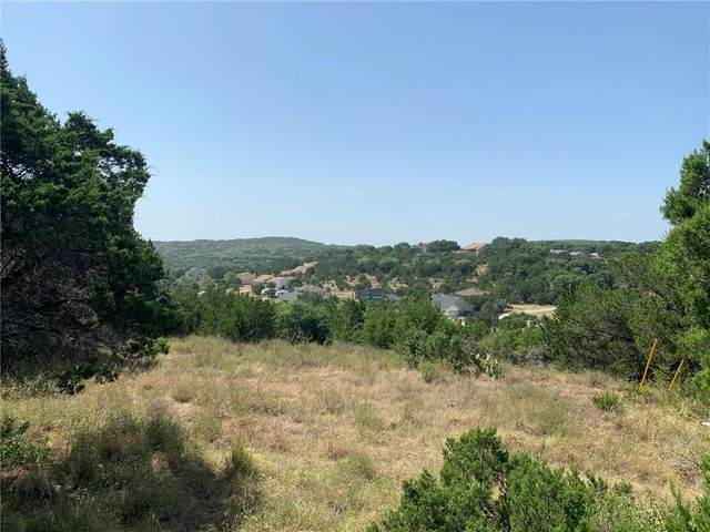 22329 Briarcliff Dr, Spicewood, TX 78669 (#3935944) :: RE/MAX Capital City