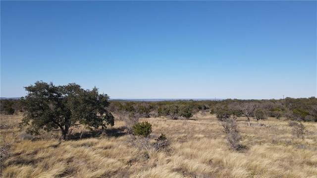 35 Indian Rdg, Round Mountain, TX 78663 (MLS #3941270) :: Vista Real Estate