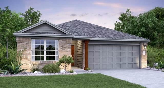 6509 Cetone Terrace, Round Rock, TX 78665 (#3942399) :: Ana Luxury Homes