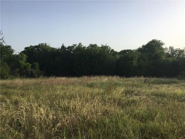 1233 County Rd 257, Liberty Hill, TX 78642 (#3952556) :: Zina & Co. Real Estate