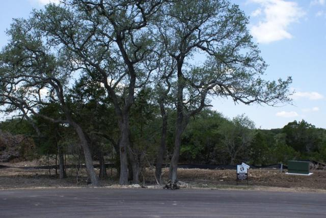 000 Lot 22 Calvary Cove, Dripping Springs, TX 78620 (#3959873) :: Elite Texas Properties