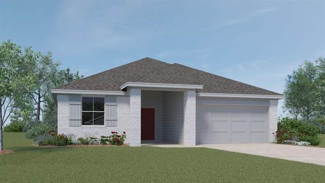 236 Fall Aster Dr, Kyle, TX 78640 (#3977008) :: All City Real Estate