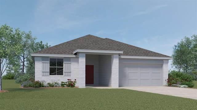 236 Fall Aster Dr, Kyle, TX 78640 (#3977008) :: Papasan Real Estate Team @ Keller Williams Realty