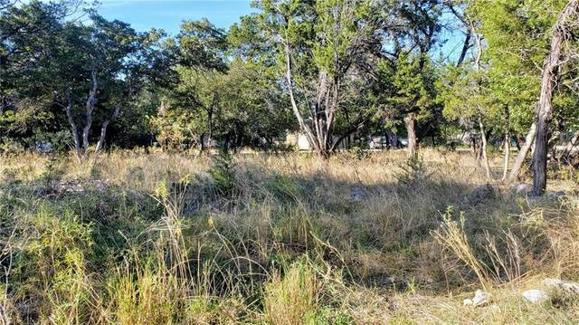 4 Happy Hollow Ct, Wimberley, TX 78676 (#3980460) :: First Texas Brokerage Company