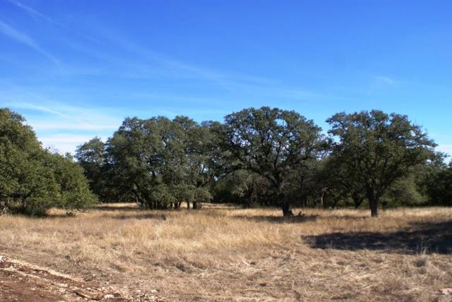0 Redemption Ave Lot 28, Dripping Springs, TX 78620 (#3994000) :: Watters International