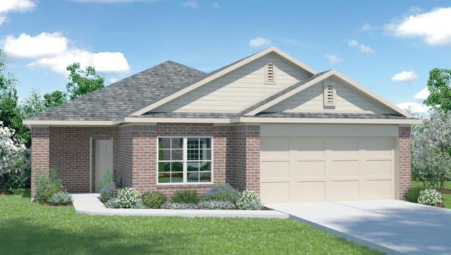 329 Shiner Ln, Georgetown, TX 78626 (#3997888) :: The Perry Henderson Group at Berkshire Hathaway Texas Realty