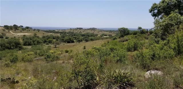 Lot 81 Summit Ridge Trl, Johnson City, TX 78636 (#4006526) :: Papasan Real Estate Team @ Keller Williams Realty