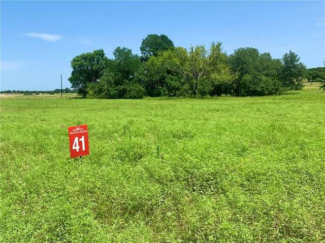 41 County Rd 112, Burnet, TX 78611 (#4018099) :: Ben Kinney Real Estate Team