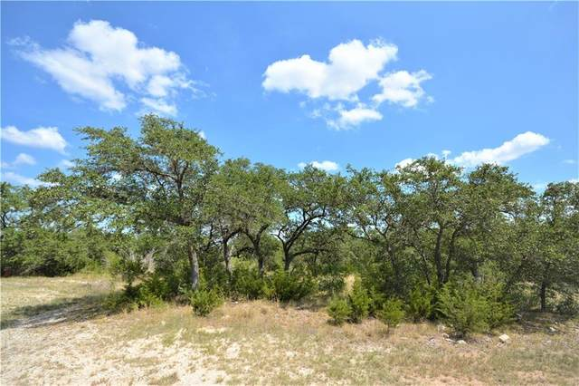 220 Benney Ln, Dripping Springs, TX 78620 (MLS #4038266) :: Vista Real Estate