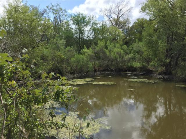 TBD County Rd 421, Spicewood, TX 78669 (#4042680) :: The ZinaSells Group