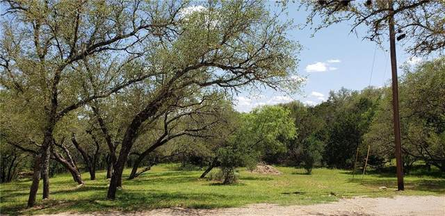 Lot 315 Rolling Hills Dr, Spicewood, TX 78669 (#4048189) :: The Perry Henderson Group at Berkshire Hathaway Texas Realty
