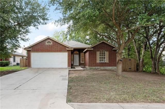 221 Bunny Trl, Kyle, TX 78640 (#4049715) :: Papasan Real Estate Team @ Keller Williams Realty