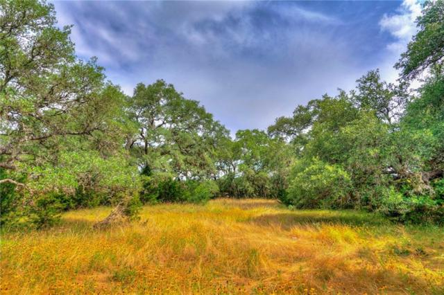 1400 Driftwood Valley Trail, Driftwood, TX 78619 (#4058469) :: Papasan Real Estate Team @ Keller Williams Realty