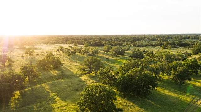 #15 Twin Oaks Dr, Round Mountain, TX 78663 (#4071188) :: Papasan Real Estate Team @ Keller Williams Realty