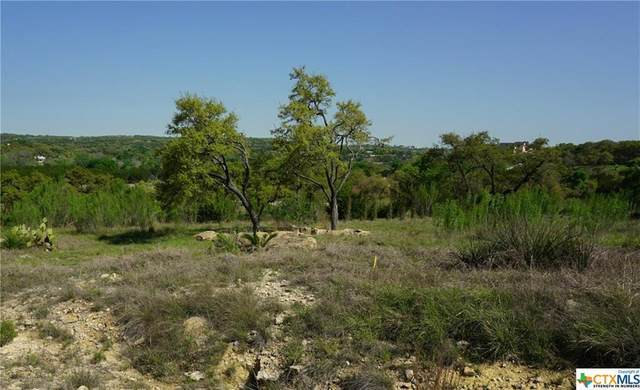726 Caballo Trl, Canyon Lake, TX 78133 (#4082911) :: The Summers Group