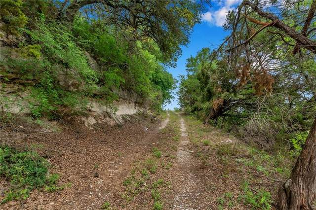 18601 Double Canyon Dr, Jonestown, TX 78645 (#4087087) :: Empyral Group Realtors