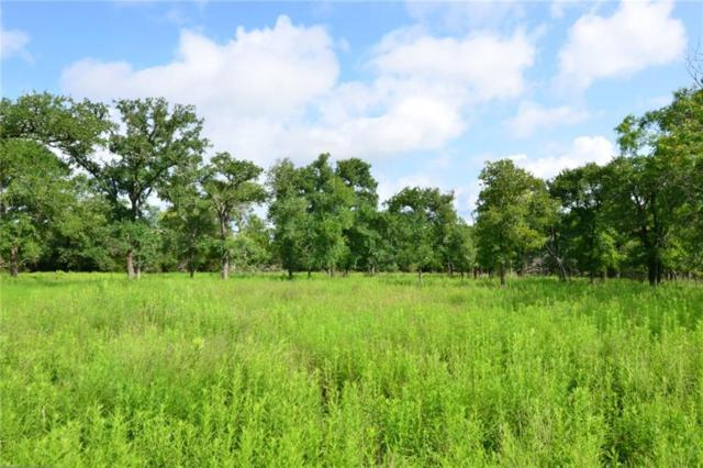184 Cripple Crk, Cedar Creek, TX 78612 (#4104358) :: The Heyl Group at Keller Williams