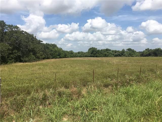 356 Sunflower Trail, Luling, TX 78648 (#4112325) :: Ben Kinney Real Estate Team