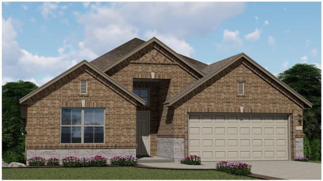 1009 Lauren Way, Hutto, TX 78634 (#4135408) :: Ana Luxury Homes