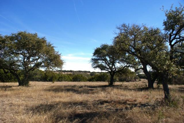 0 Redemption Ave Lot 30, Dripping Springs, TX 78620 (#4147120) :: Watters International