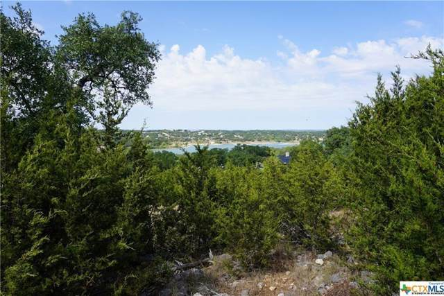 645 Damar Dr, Canyon Lake, TX 78133 (MLS #4156679) :: Green Residential