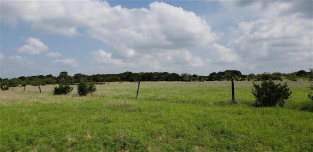 TBD Burnet Cr 103, Lampasas, TX 76550 (#4167248) :: Papasan Real Estate Team @ Keller Williams Realty
