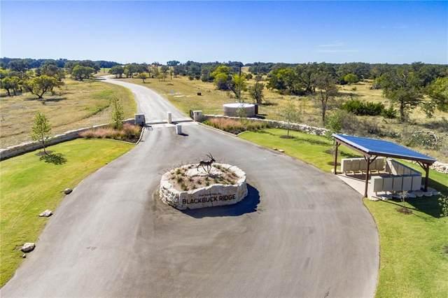 - Axis Way, Lampasas, TX 76550 (#4174320) :: First Texas Brokerage Company