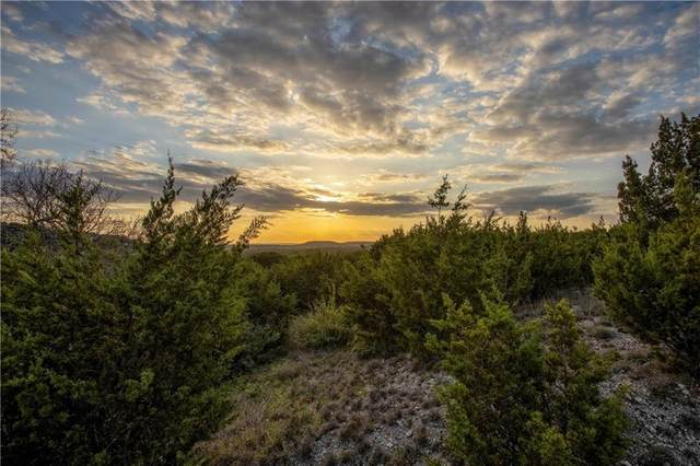 Lot 1 County Road 334, Burnet, TX 78611 (#4183954) :: Zina & Co. Real Estate