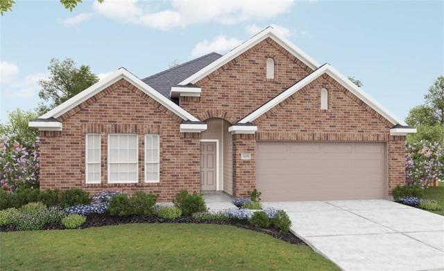 13512 Ciderwood Ct, Manor, TX 78653 (#4184645) :: Papasan Real Estate Team @ Keller Williams Realty