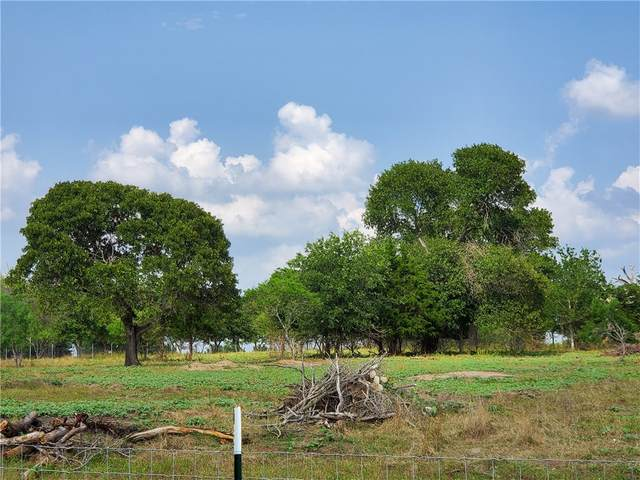 383 Fox Ln, Lockhart, TX 78644 (#4198844) :: The Heyl Group at Keller Williams
