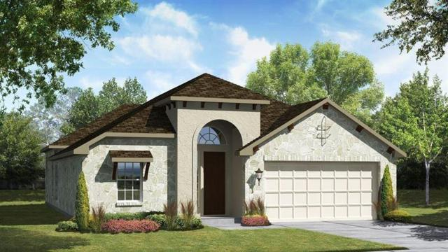 13001 Cardinal Flower Dr Dr, Austin, TX 78739 (#4202816) :: Watters International