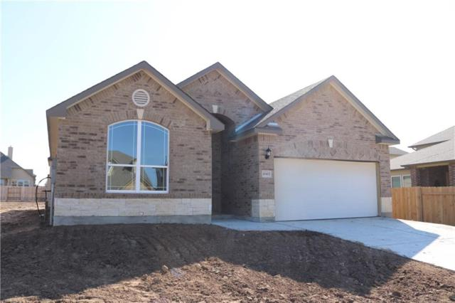 20413 Shellduck Dr, Pflugerville, TX 78660 (#4206106) :: Ana Luxury Homes