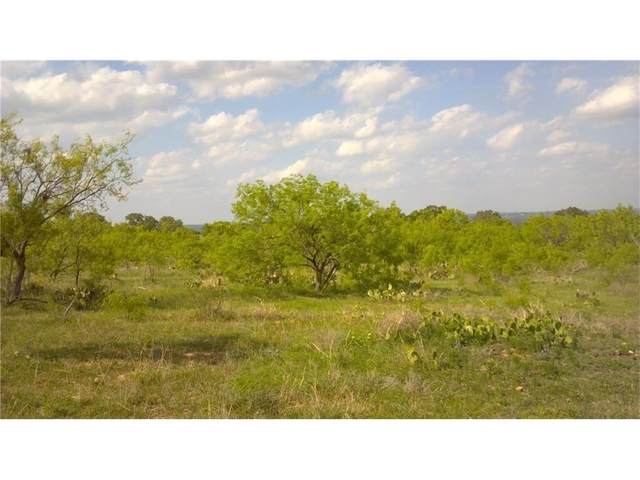 3151 Cr 404, Spicewood, TX 78669 (#4208340) :: The Perry Henderson Group at Berkshire Hathaway Texas Realty