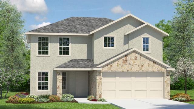 125 Werner, San Marcos, TX 78666 (#4218761) :: Zina & Co. Real Estate