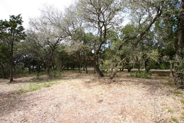 11303 Clearview Dr, Jonestown, TX 78645 (#4235523) :: The Perry Henderson Group at Berkshire Hathaway Texas Realty