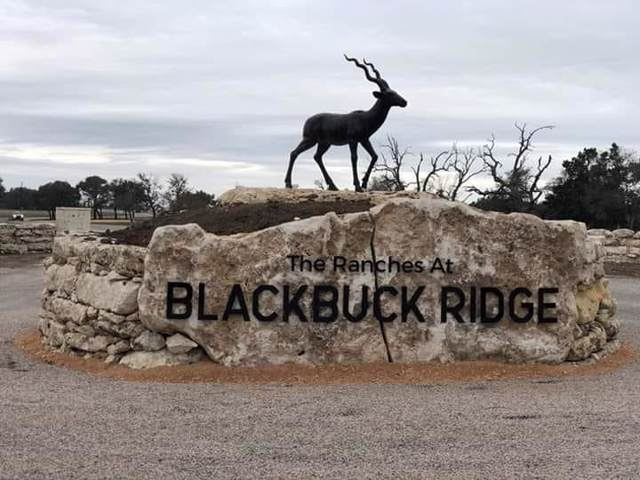 300 Waterbuck Way, Lampasas, TX 76550 (#4237064) :: The Heyl Group at Keller Williams