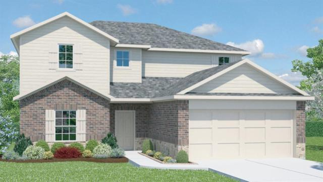 313 Shiner Ln, Georgetown, TX 78626 (#4257682) :: Magnolia Realty