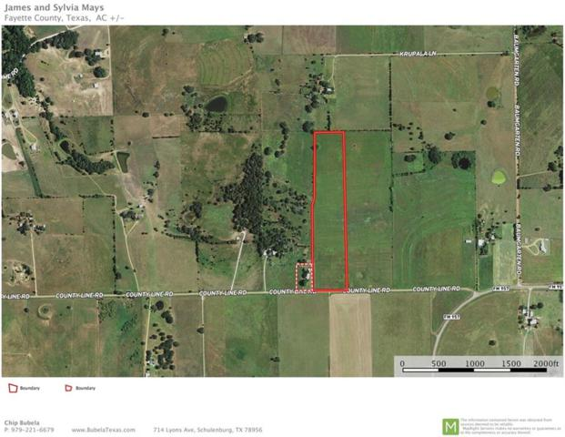 000 W County Line Rd, Schulenburg, TX 78956 (#4260262) :: Papasan Real Estate Team @ Keller Williams Realty
