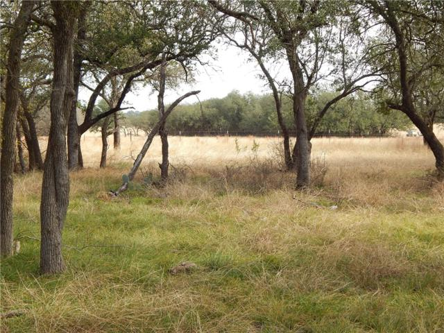 TBD Lot A County Rd 225, Florence, TX 76527 (#4289531) :: The Perry Henderson Group at Berkshire Hathaway Texas Realty